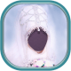 Hijab Wedding Photo Montage windows phone