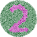 /color-blindness-test-10