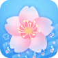 Spring Sakura Panda Keyboard icon