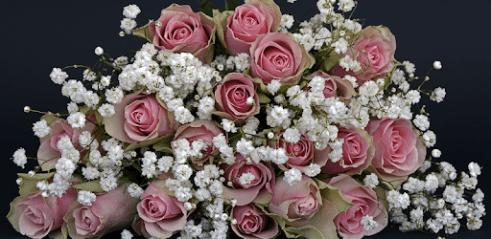 Télécharger Fleurs Fonds Décran Animés Pour Pc Gratuit