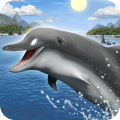 /APK_Dolphins-live-wallpaper_PC,55208008.html