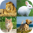 Animal quiz - Animal matching