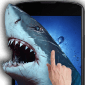 Shark Attack - Magic Touch icon