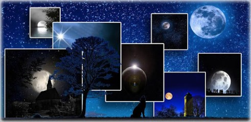 moonlight live wallpaper download for pc windows 8 1 10 8 7 xp vista