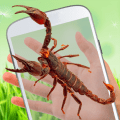 /APK_Scorpion-on-hand-scary-prank_PC,48541436.html