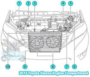 2015 Toyota Sienna Engine Compartment Parts Diagram