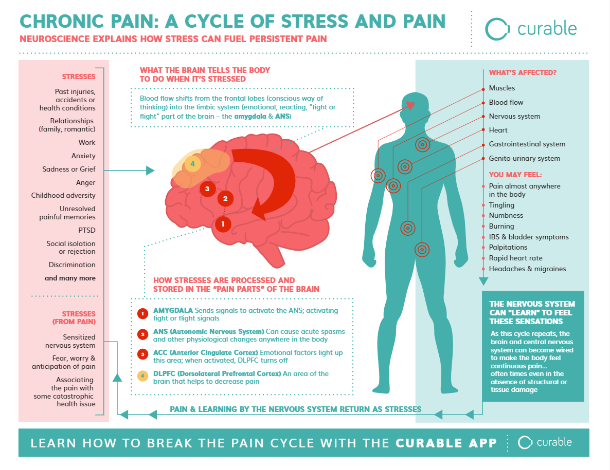 hight resolution of chronic pain a cycle of stress and pain how curable works infographic