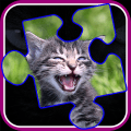 /APK_Kitty-Cat-Jigsaw-Puzzles_PC,49460581.html