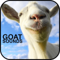 /goat-sounds-1
