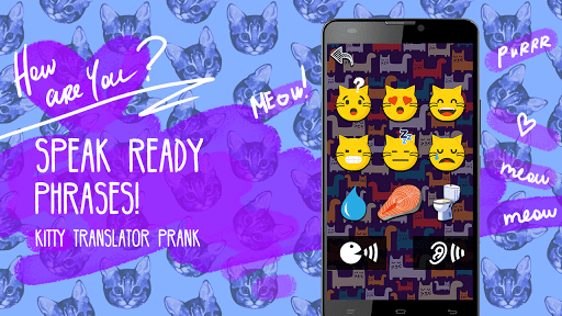 Kitty translator prank APK