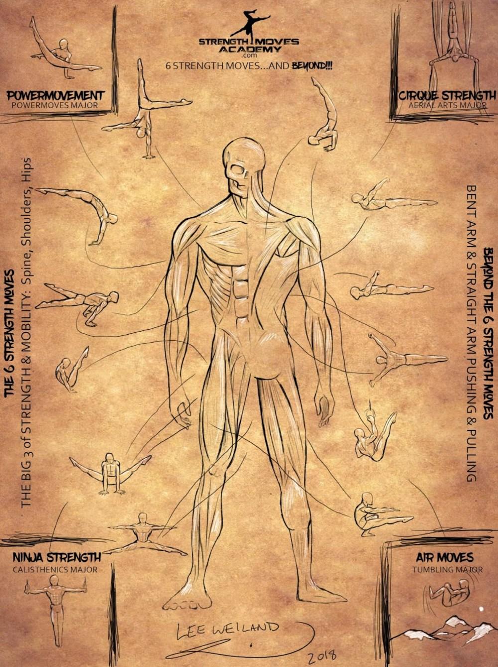 medium resolution of bent arm diagram