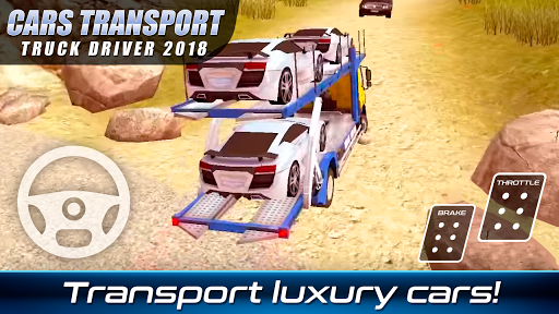 Cars Transport Truck Driver 2018 PC