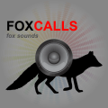 /fox-calls-fox-sounds