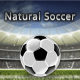 Natural Soccer (Jeu d'arcade) Sur PC windows et Mac