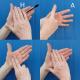 British Sign Language windows phone