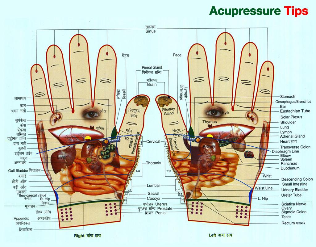 acupressure diagram of pressure points john deere 316 wiring pdf tips android apps on google play