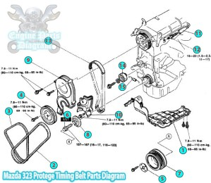 1992 Mazda 323 Protege Timing Belt Parts Diagram (B6 Engine)