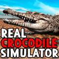 /real-crocodile-simulator