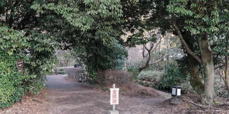 福岡景點 湯布院散策 在金鱗湖畔喝忘憂咖啡,願意待一下午的仙境美景 Cafe La Ruche