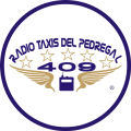 /radio-taxis-del-pedregal