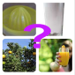 Fruits & Vegetables Quiz icon