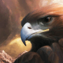 Eagle Wallpaper Apps On Google Play