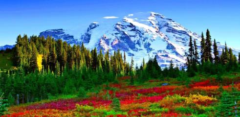 Télécharger Spring Landscape Wallpaper Hd Pour Pc Gratuit Windows