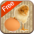 /chicken-games-for-kids-free