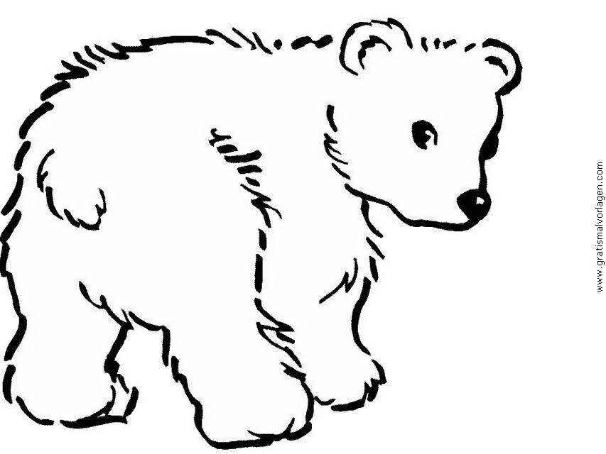 Eisbär Ausmalbild