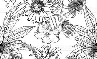 Blumen Malvorlagen Fur Erwachsene   Kinder färben