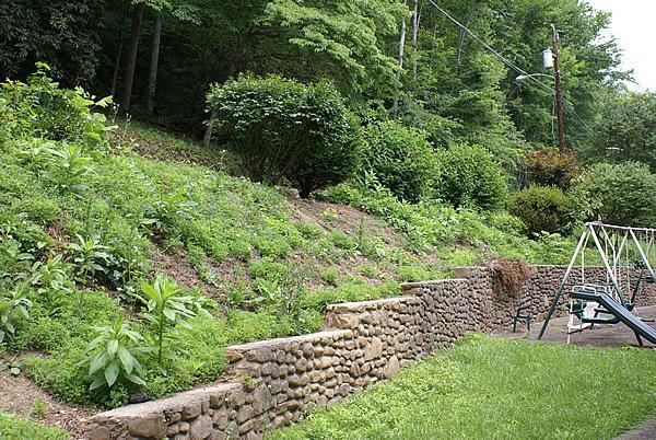 fast design hillside landscaping