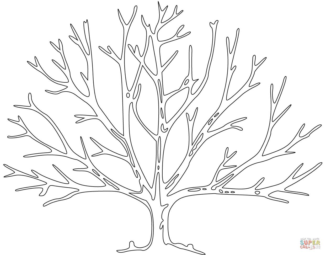 Frisch Malvorlage Kahler Baum Top Kostenlos Färbung