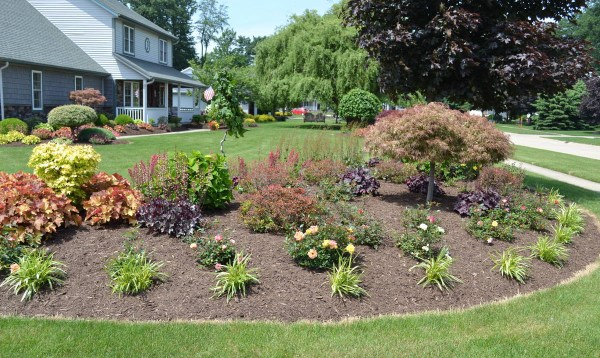 amazing corner lot landscaping