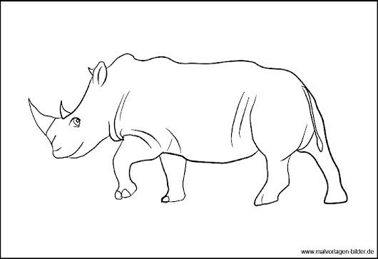 Neues Ausmalbild aus unserer Serie Tiere aus Afrika Das