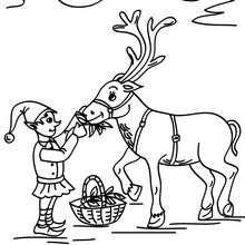 Malvorlage Weihnachtswichtel Kostenlos  Weihnachtswichtel