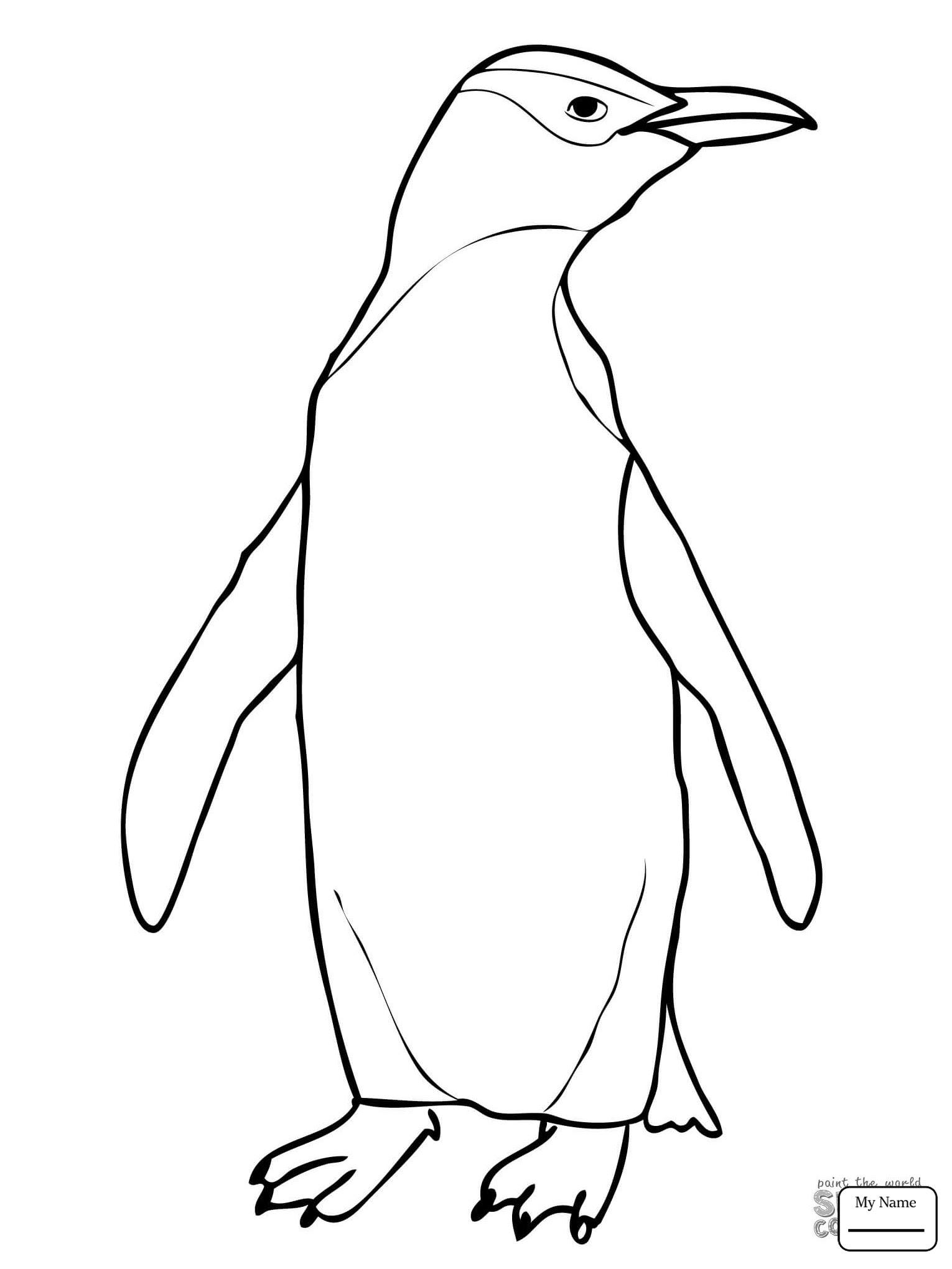 Ausmalbild Pinguin Familie - Cartoon-Bild