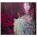 /APK_White-Peacock-Live-Wallpaper_PC,40161882.html