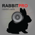 /rabbit-calls-rabbit-sounds