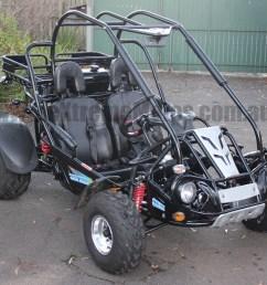 300cc xrx trailmaster hammerhead twister ss go cart offroad dune buggy [ 1071 x 873 Pixel ]