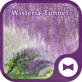 /ru/wallpaper-wisteria-tunnel