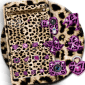Pink Gold leopard Print Theme icon