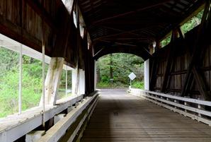 view through Wildcat Bridge