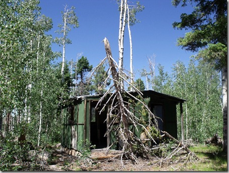 04 Old cabin by North Rim fire tower NR GRCA NP AZ (1024x768)