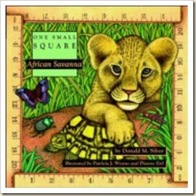africa small square