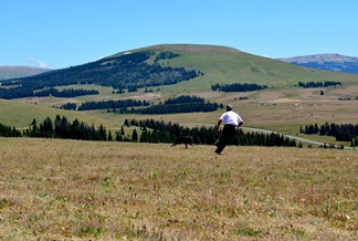 playtime with Roger and Jackson in the Bighorn Mountains