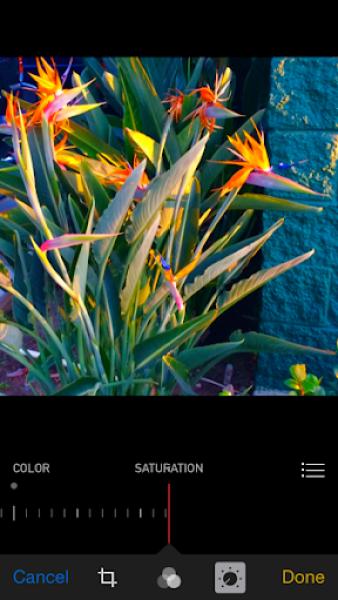 iOS 8 photos app full saturation