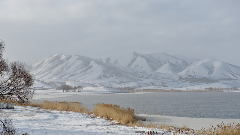 Winter on the iranian plateau