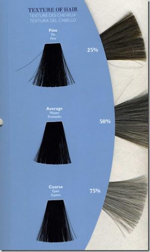Wella kp chart also crucial factors affecting your hair color result killerstrands rh killerstrandsspot