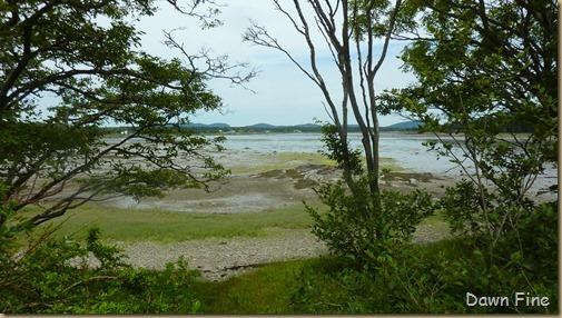 Acadia National Park_138