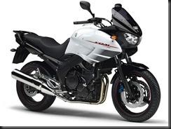 Yamaha TDM900A 08